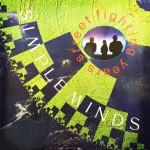 Simple Minds julkaisi albumin Street Fighting Years vuonna 1989. Lisää blogista Levyhyllyt.